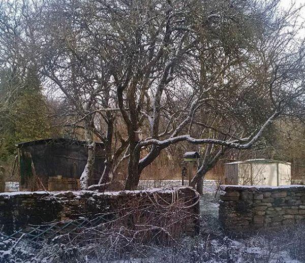 Au soleil ou sous la neige, vos plus belles photos du mois de janvier