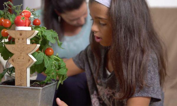 Ce jouet connecté va faire de vos enfants de vrais petits jardiniers