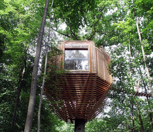 Une maison insolite construite autour d 39 un arbre - Maison contemporaine construite autour dun arbre ...