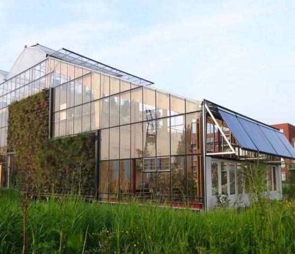 Cette famille teste la vie dans une maison écolo construite à l'intérieur d'une serre