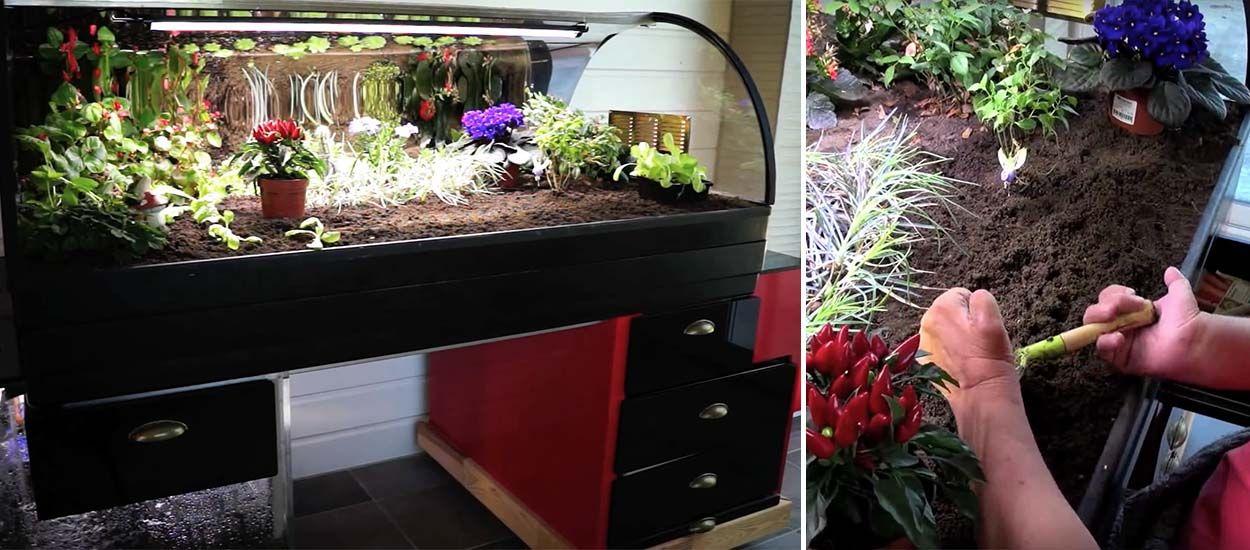 Ce potager pour jardiner assis est parfait pour vos grands-parents !