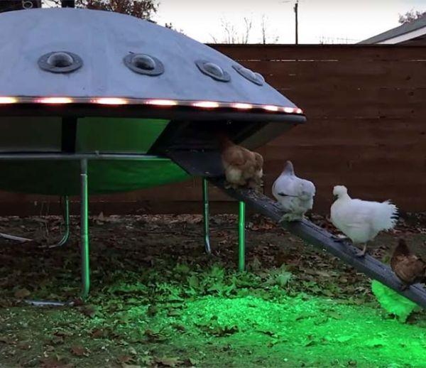 Un couple d'artistes a fabriqué un poulailler fantastique... en forme d'OVNI !