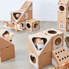 Jeu de construction : Cette maison pour chats est le rêve de tous les matous