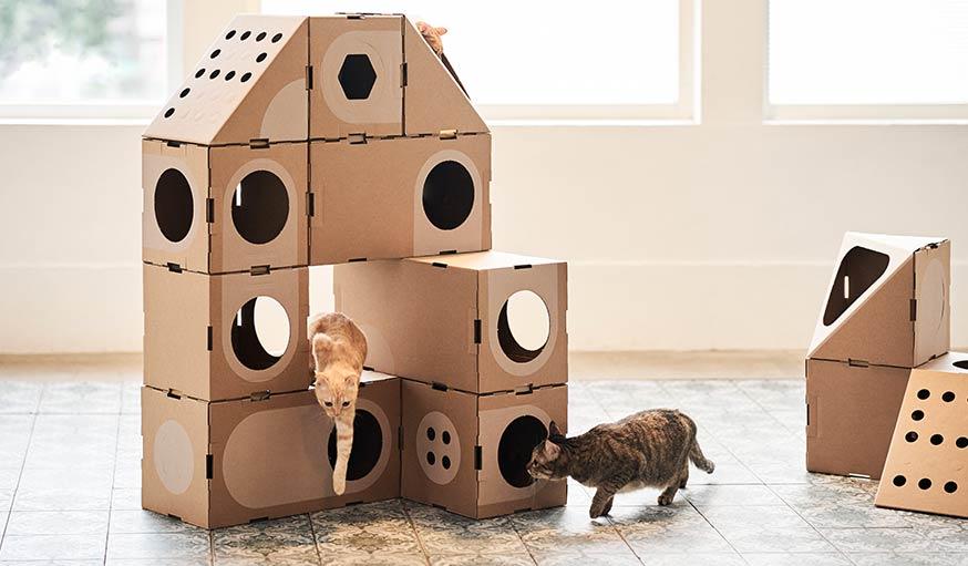 jeu de construction cette maison pour chats est le r ve. Black Bedroom Furniture Sets. Home Design Ideas