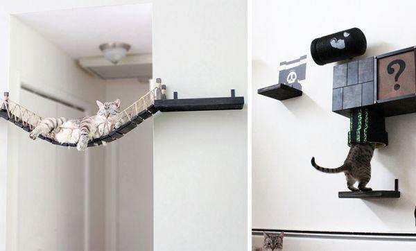 12 parcours géniaux pour votre chat acrobate
