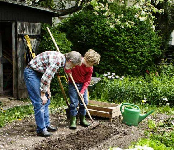 Louez le potager de vos voisins pour cultiver vos légumes et profiter d'un coin de verdure