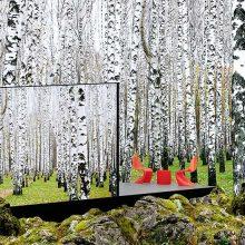 Cette maison miroir super écolo se fond à merveille dans le paysage
