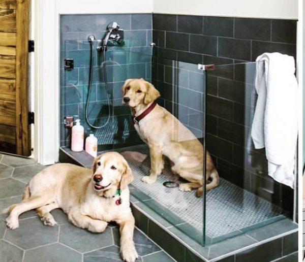 Découvrez ces 11 douches pour chiens qui affolent la toile
