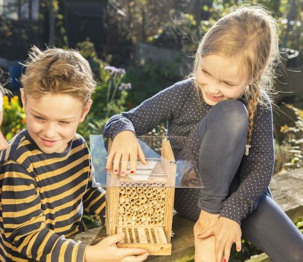 Voici comment installer une maisonnette pour abeilles inoffensives chez vous