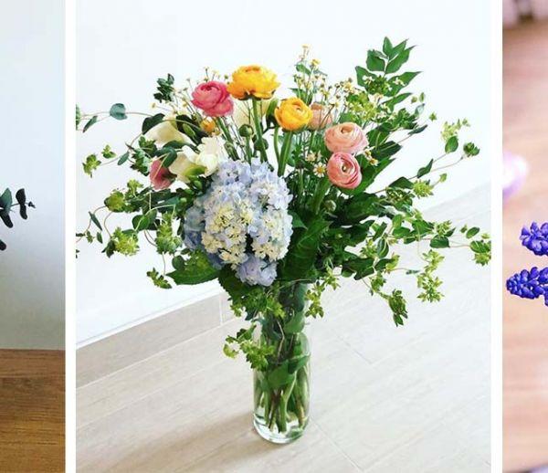 Début du printemps : privilégiez ces 9 fleurs de saison pour décorer votre maison