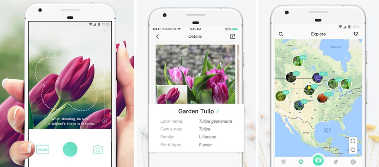Cette application mobile vous donne le nom de toutes les fleurs que vous prenez en photo !