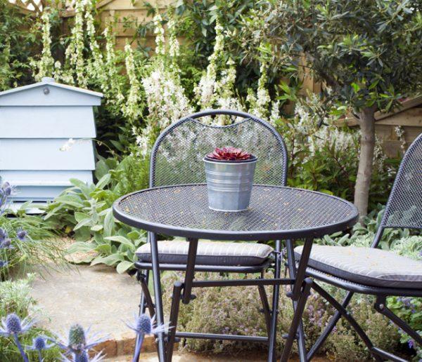 Comment choisir les plantes idéales pour votre jardin ?