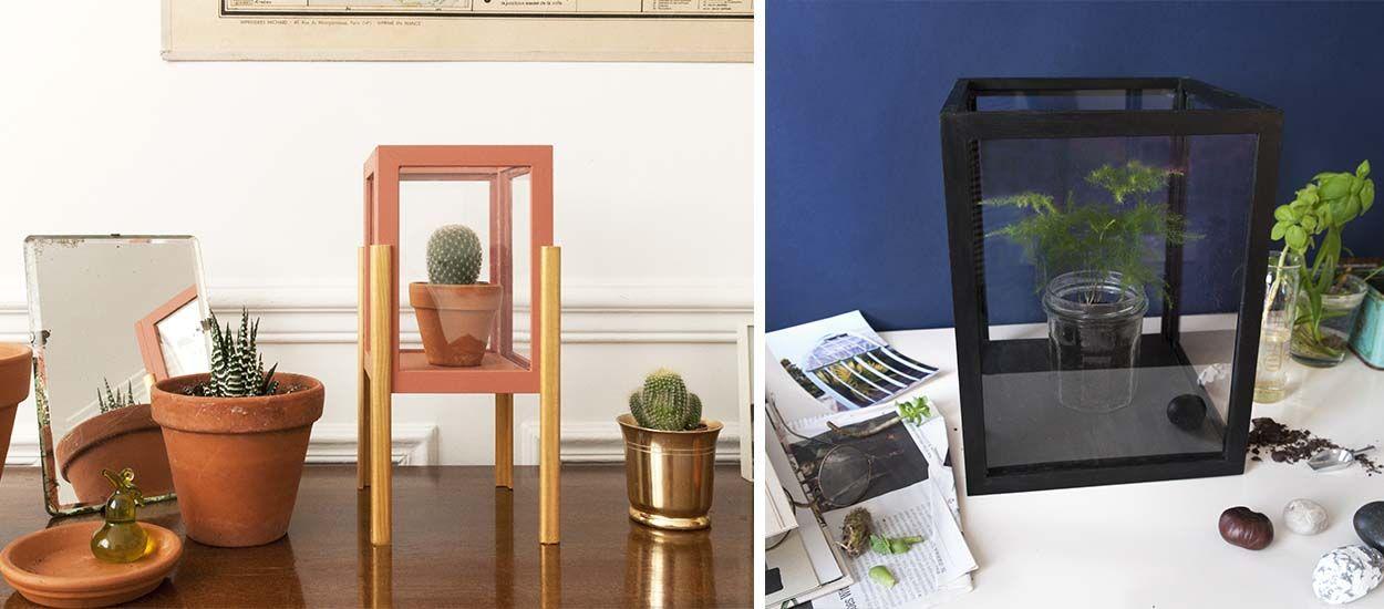 Tuto : Fabriquez votre propre vitrine et sublimez vos plantes pour moins de 10 euros !