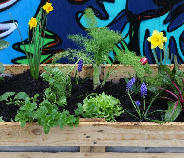 Tuto : Fabriquez un bac en palette pour végétaliser votre rue