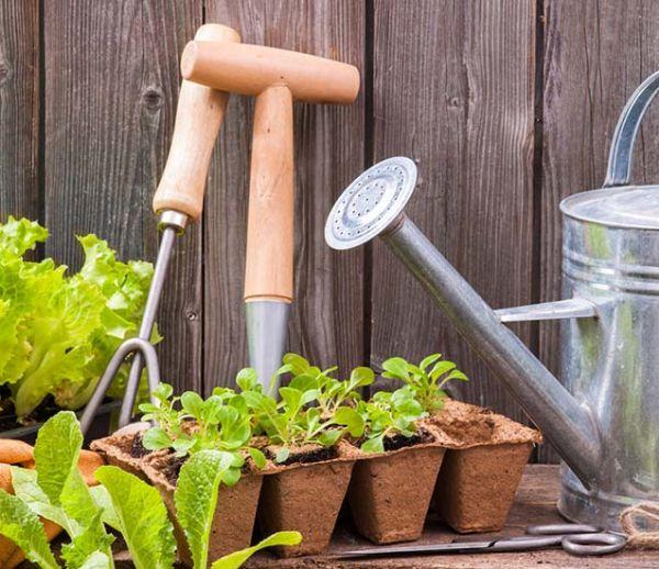 diy transformez une goutti re en jardini re. Black Bedroom Furniture Sets. Home Design Ideas