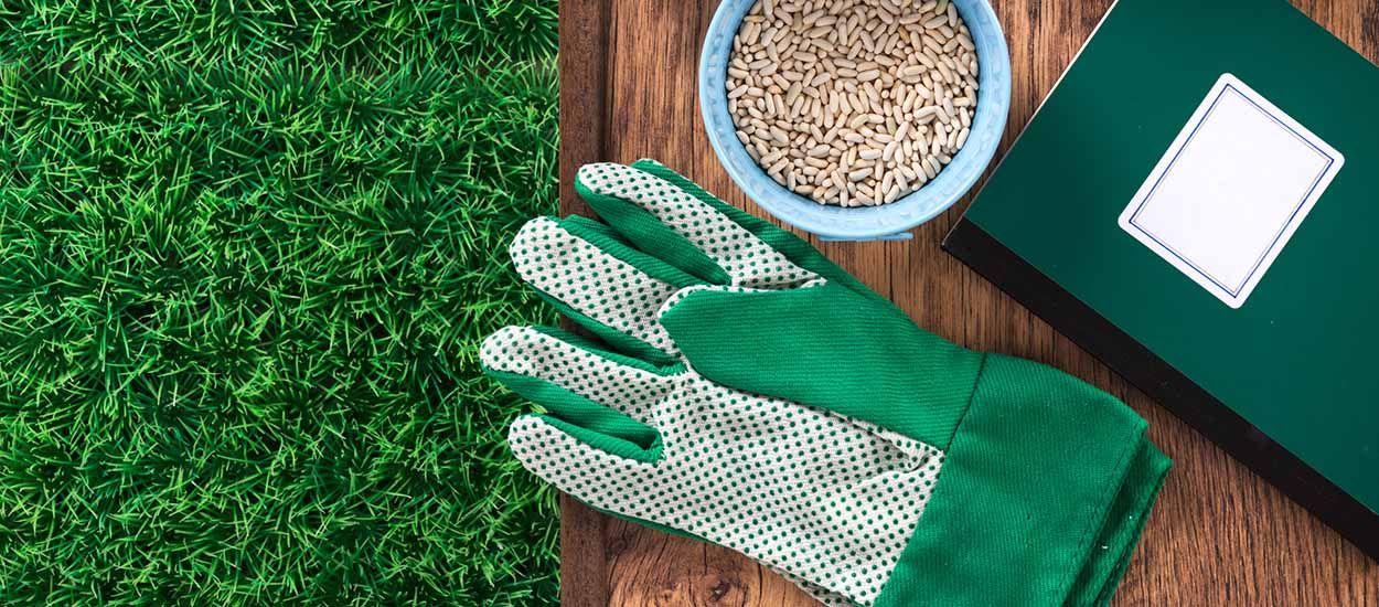 Petit lexique de la permaculture pour vous y retrouver facilement