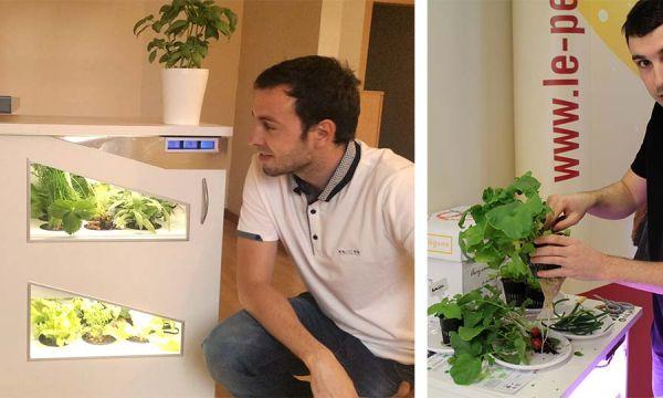 Pousse-légume érige le potager d'intérieur au rang d'indispensable de la cuisine aménagée