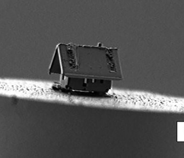 Des chercheurs français ont construit la plus petite maison du monde, de la taille d'une cellule humaine