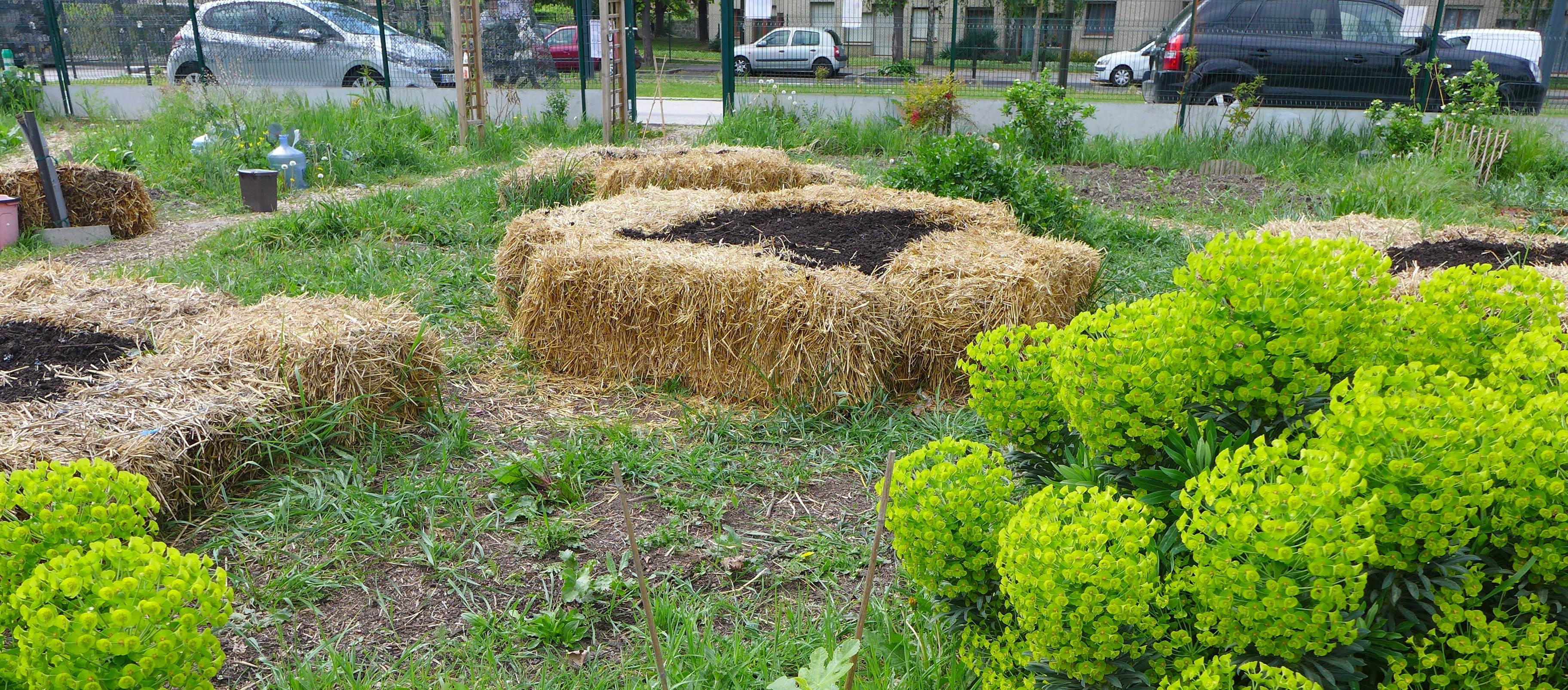 Un Petit Potager Productif pour un jardin en permaculture : découvrez les piscines à