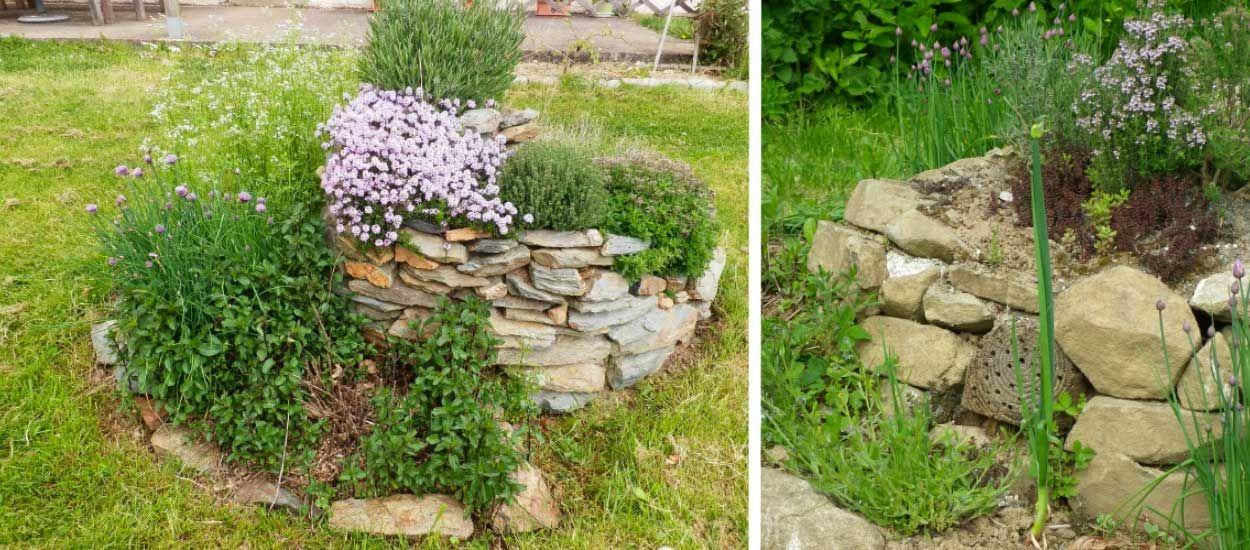 Jardin aromatique en permaculture comment faire un - Comment demarrer un jardin en permaculture ...