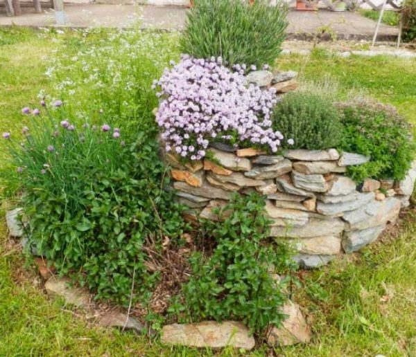 Créez votre spirale d'herbes aromatiques pour un beau jardin en permaculture