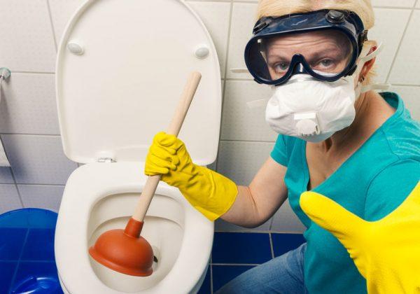 Comment déboucher ses toilettes de manière écologique sans produit ... a278541a0db0