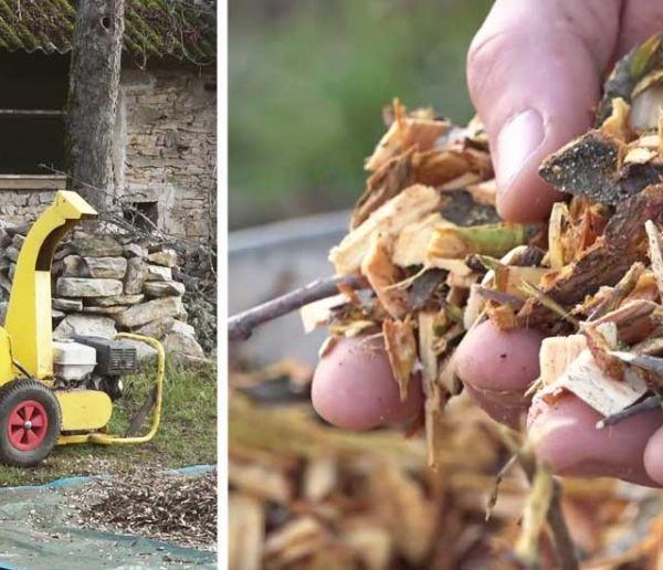 Découvrez le BRF, une alternative aux engrais chimiques, pour rendre votre jardin plus fertile