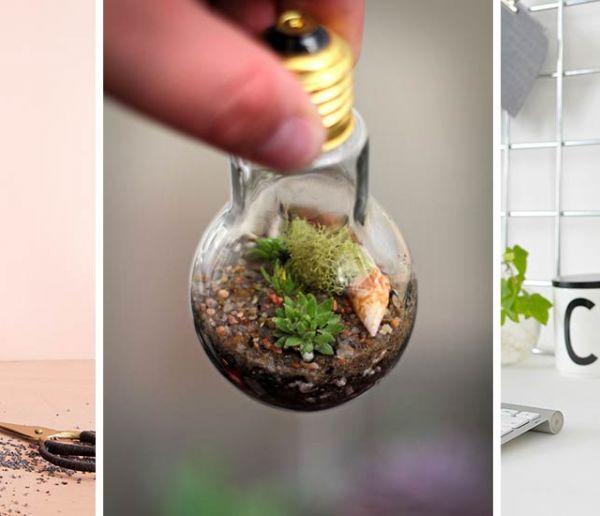 16 tutos de terrariums plus tendance les uns que les autres