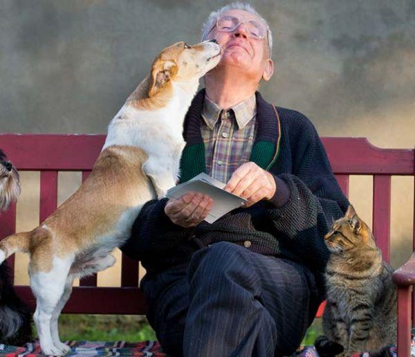 Ce refuge prête des animaux de compagnie aux personnes âgées pour rompre leur isolement