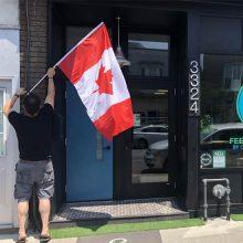 Une épicerie gratuite au Canada pour lutter contre le gaspillage alimentaire (et d'autres idées pour agir en France)