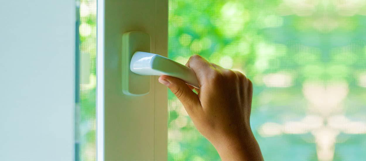 L'astuce écolo oubliée contre les moustiques : la moustiquaire ! Voici comment la choisir et l'installer ?