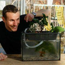 Tuto : Fabriquez un mini-module aquaponique pour votre potager d'intérieur