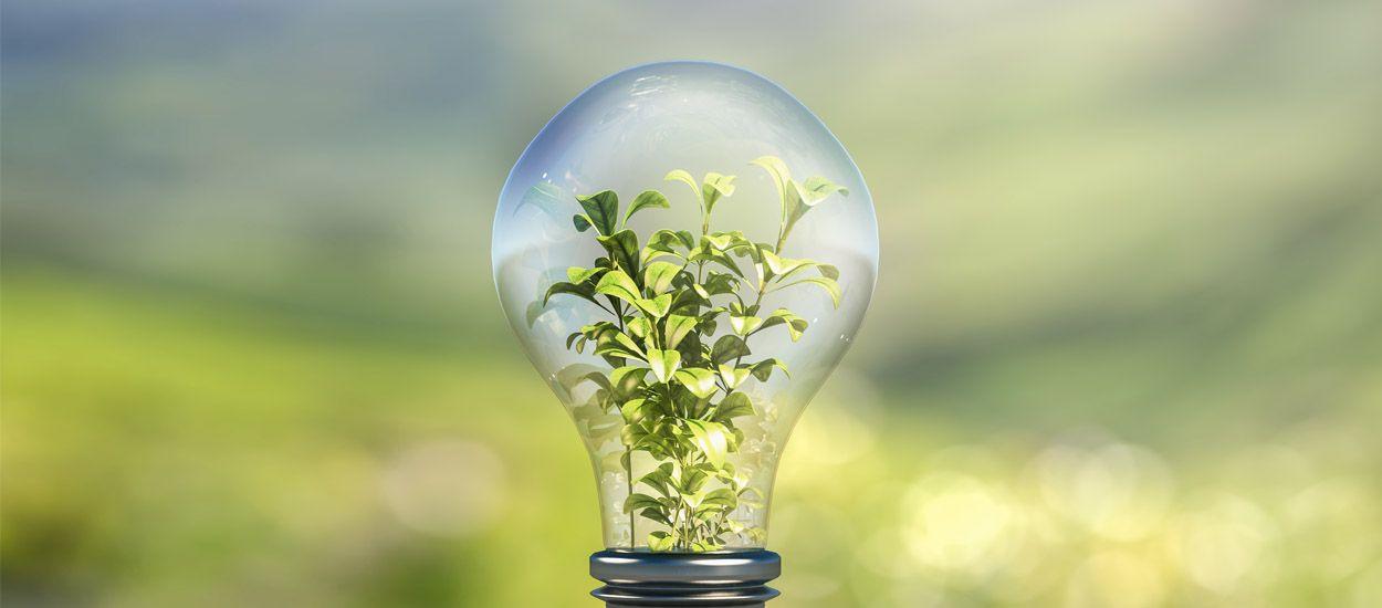 Enfin un classement pour s'y retrouver dans les fournisseurs d'électricité verte !