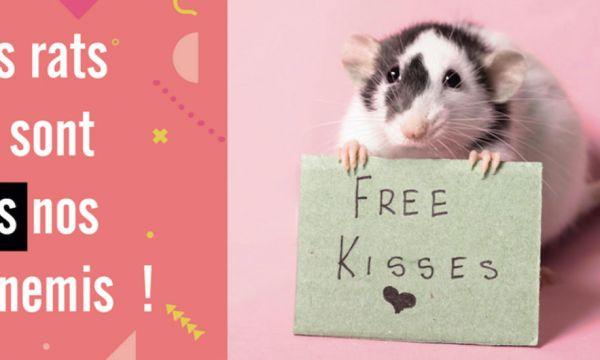 Une campagne pour garder les rats à Paris dénonce 5 idées reçues sur ces rongeurs