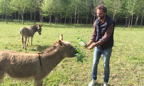 Il restaure le corps de ferme de ses grands-parents pour se lancer dans la permaculture