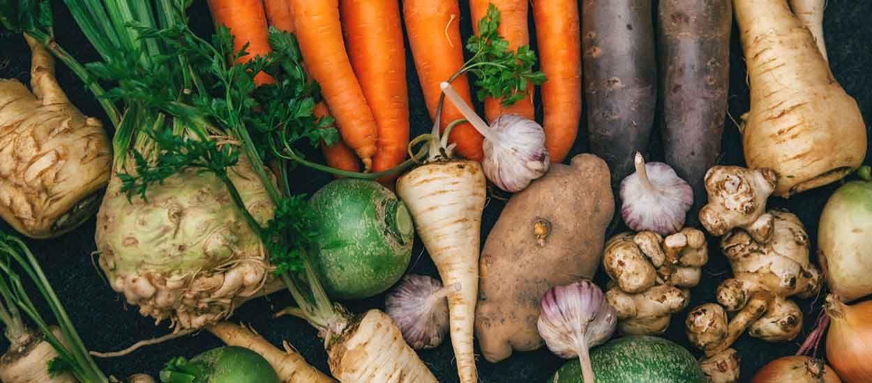Mode d'emploi pour récolter des légumes de votre jardin tout l'hiver