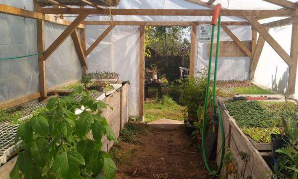 Conseils de pros pour aménager une serre en permaculture et jardiner tout l'hiver
