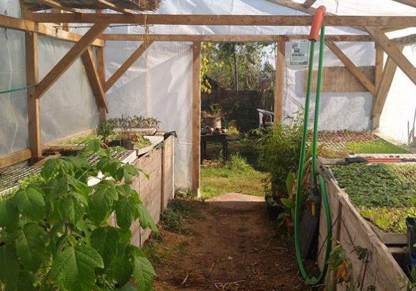 Fabriquer et aménager une serre selon les principes de la permaculture