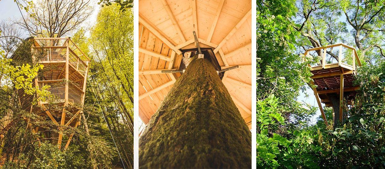 Conseils d'experts pour construire une cabane dans les arbres cool et sécurisée