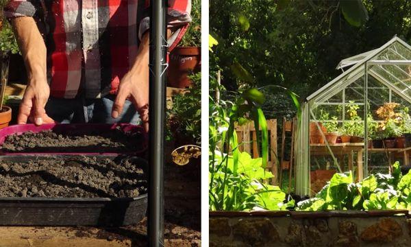 Tuto : Bâtissez une serre en verre pour y accueillir vos semis