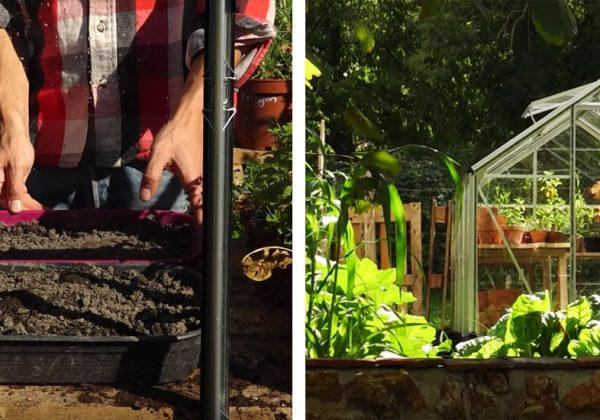 Tuto : construisez votre serre de jardin en verre pour y abriter vos ...