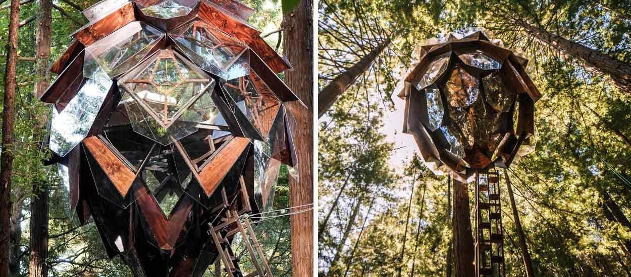 On a trouvé la cabane dans les arbres la plus originale !