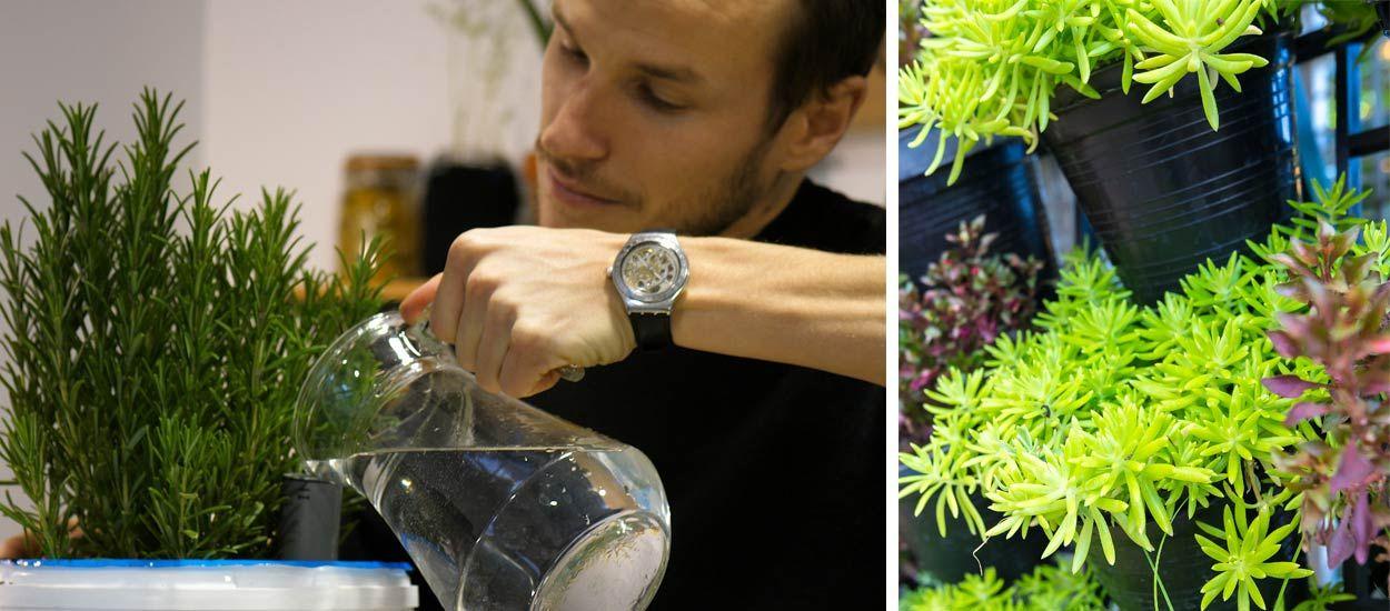 Tuto : Fabriquez une jardinière à réserve d'eau pour 5 euros