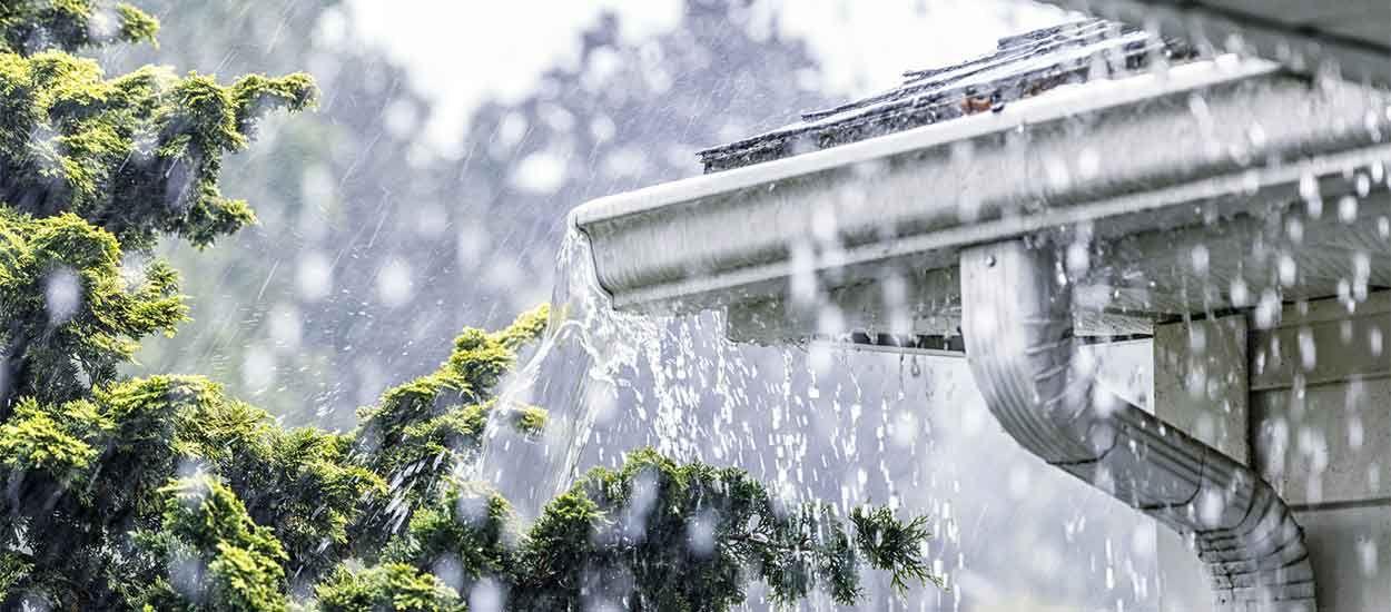 Petit guide pratique pour utiliser l'eau de pluie dans votre maison