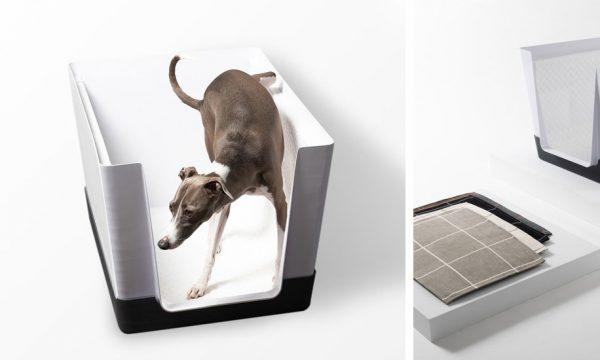Des toilettes pour chien dans la maison, une idée au poil