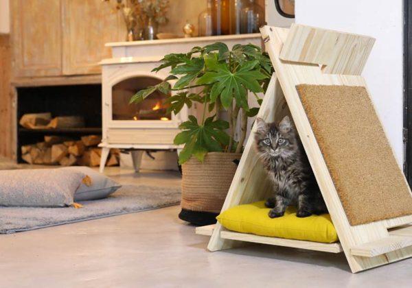 Diy Chat Une Petite Cabane En Bois En Forme De Tipi Pour