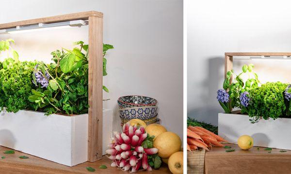 Tuto : Fabriquez un potager d'intérieur pour faire pousser vos aromates toute l'année !