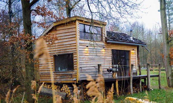 Ces deux copains ont construit une magnifique tiny house pour