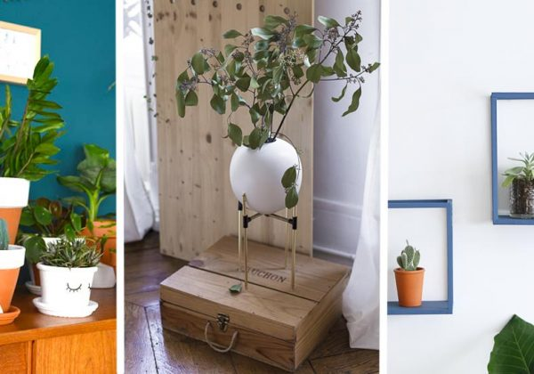 Diy Comment Mettre En Valeur Ses Plantes Vertes Dintérieur