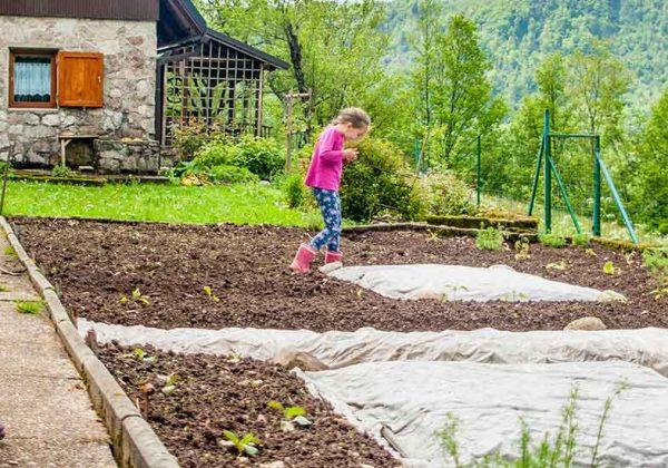 Comment Faire Son Premier Jardin Potager Conseils De Jardiniers